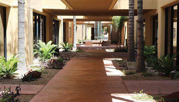 Walkway to dental office